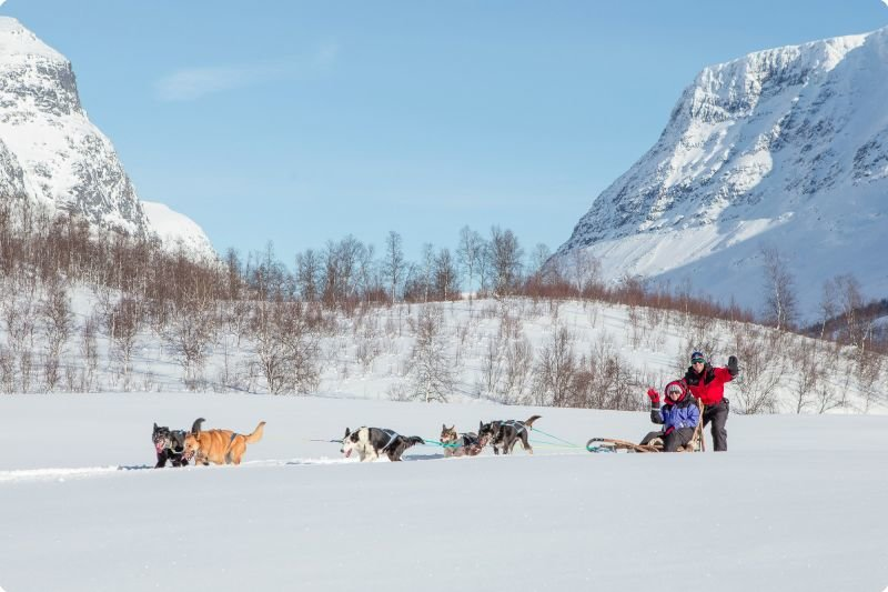 Dogsledding in Northern Norway