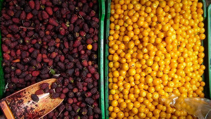 Paloquemao fruits