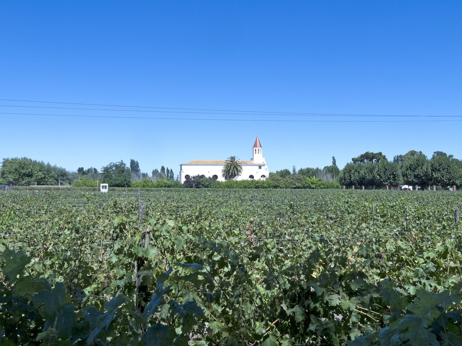 The Maipo Valley is the closest wine region to the capital, Santiago