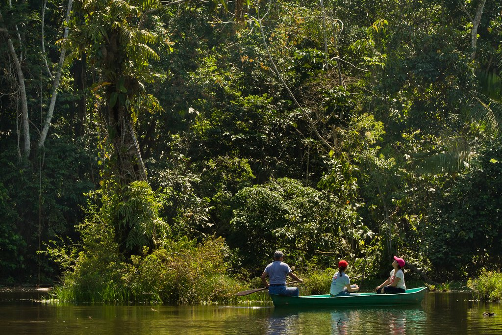Exploring the wonders of Parque Nacional Yasuni