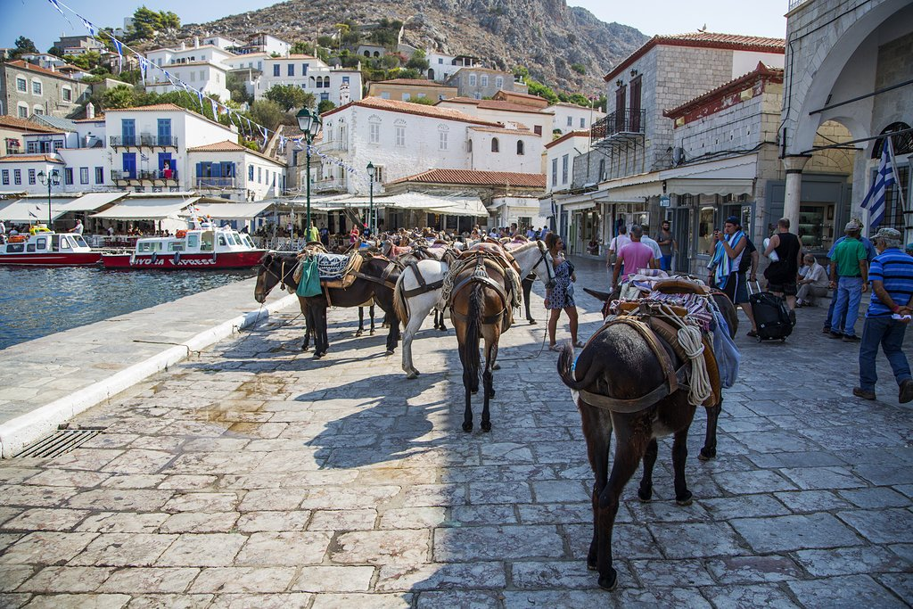 Donkeys serve as transportation on Hydra island, Greece