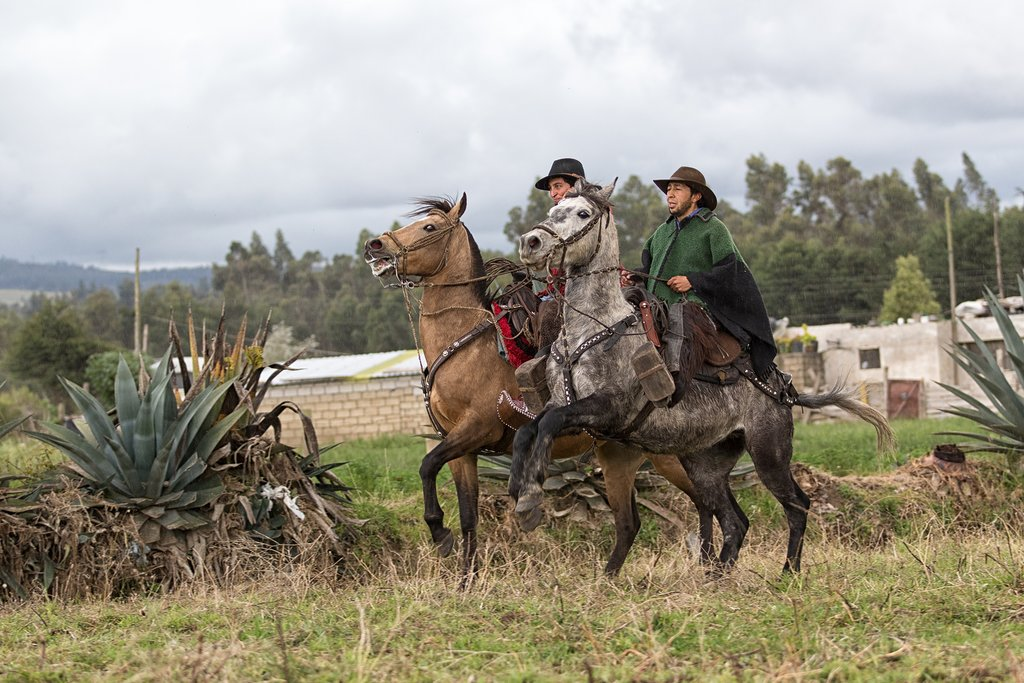Local chargas (cowboys) will accompany us on our walk through cattle country.