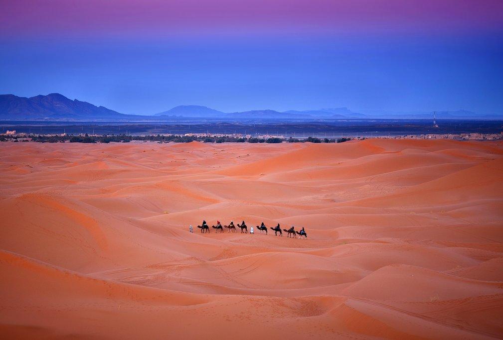 Camel trekking, Erg Chebbi, Western Sahara