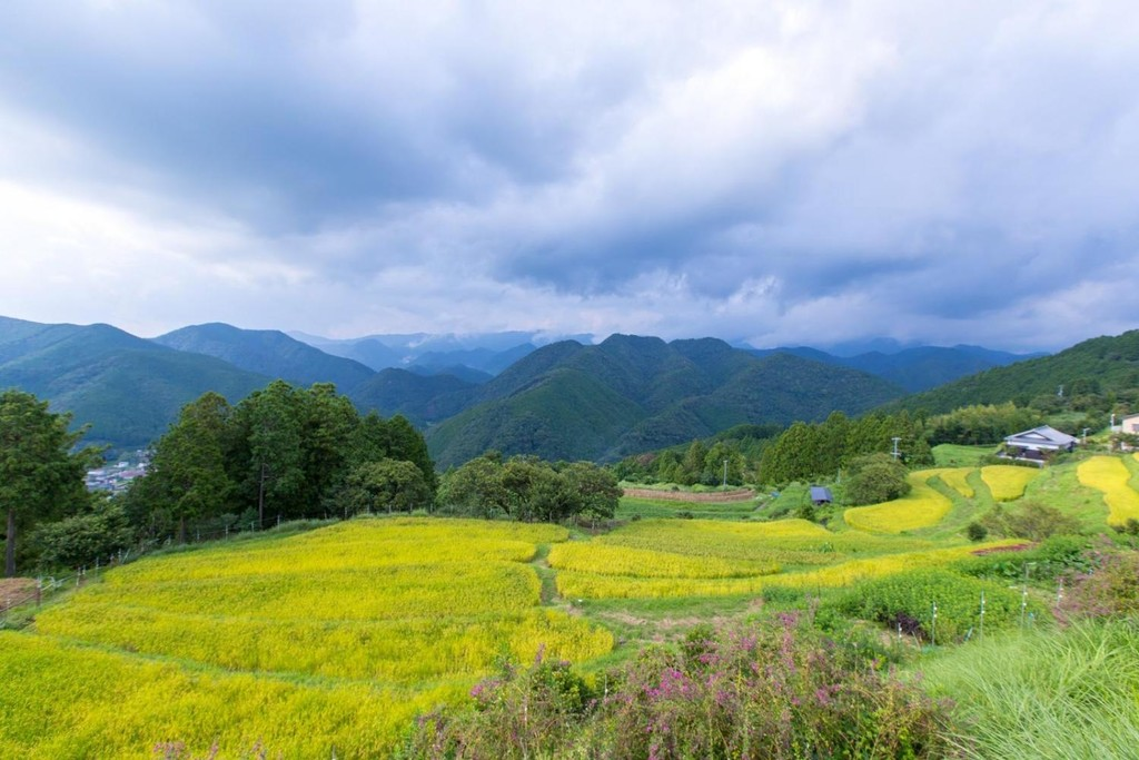 Countryside on the Kumano Kodo Trail