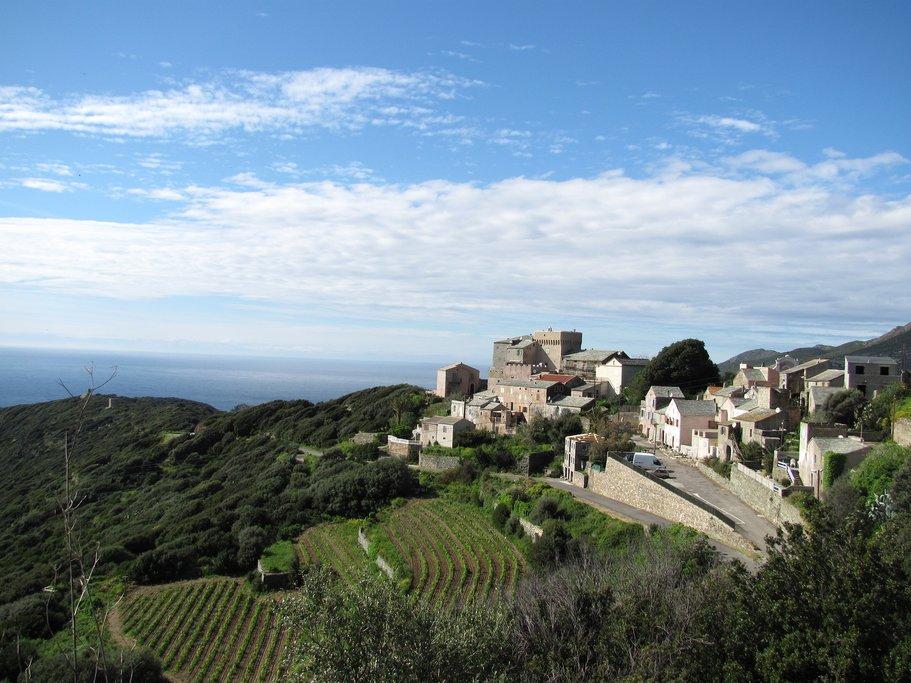 Hilltop Vineyard Near Bastia