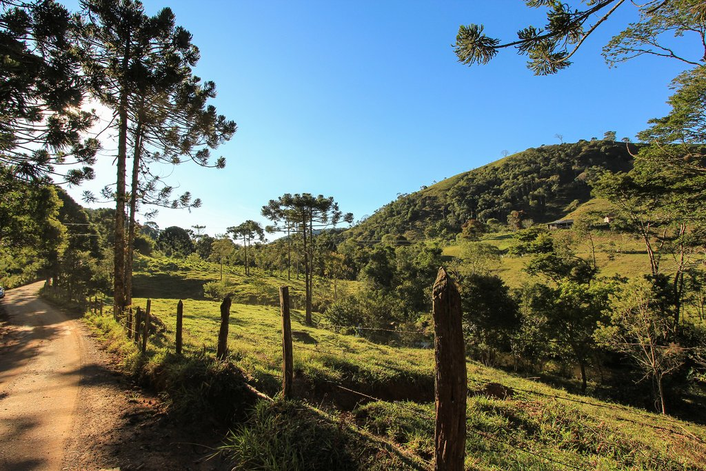Dirt road in the Serra da Mantiqueira Mountains