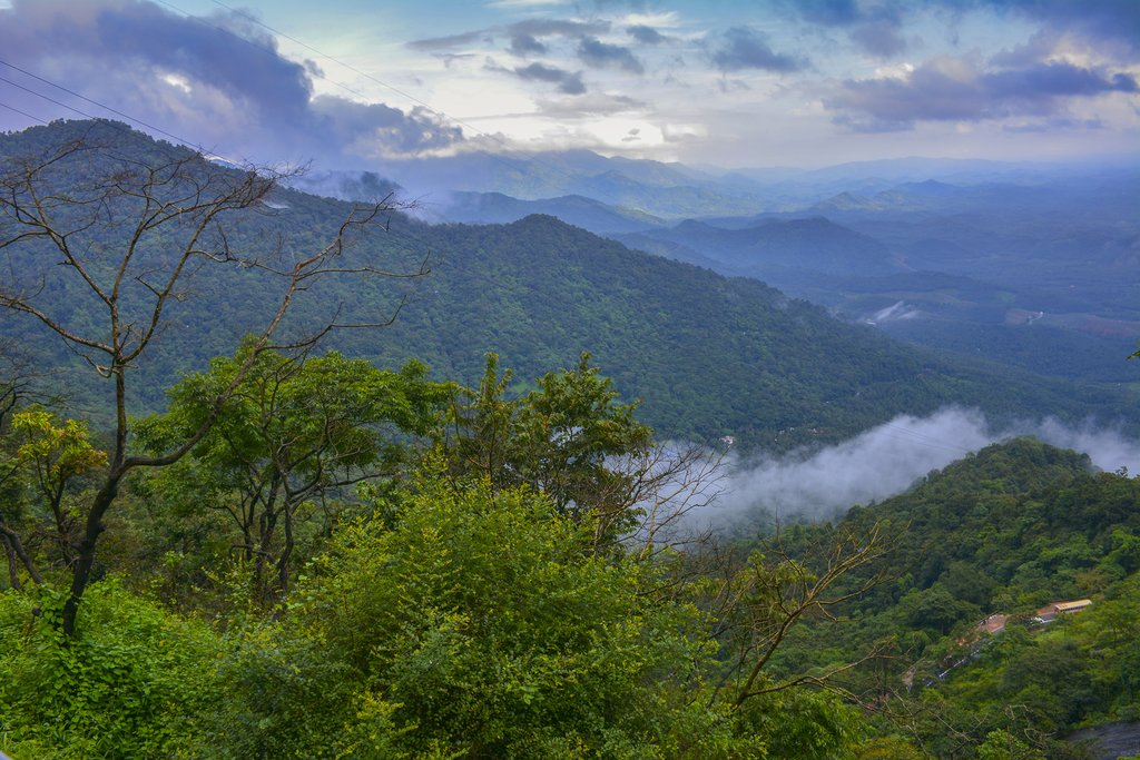 The hills of Wayanad