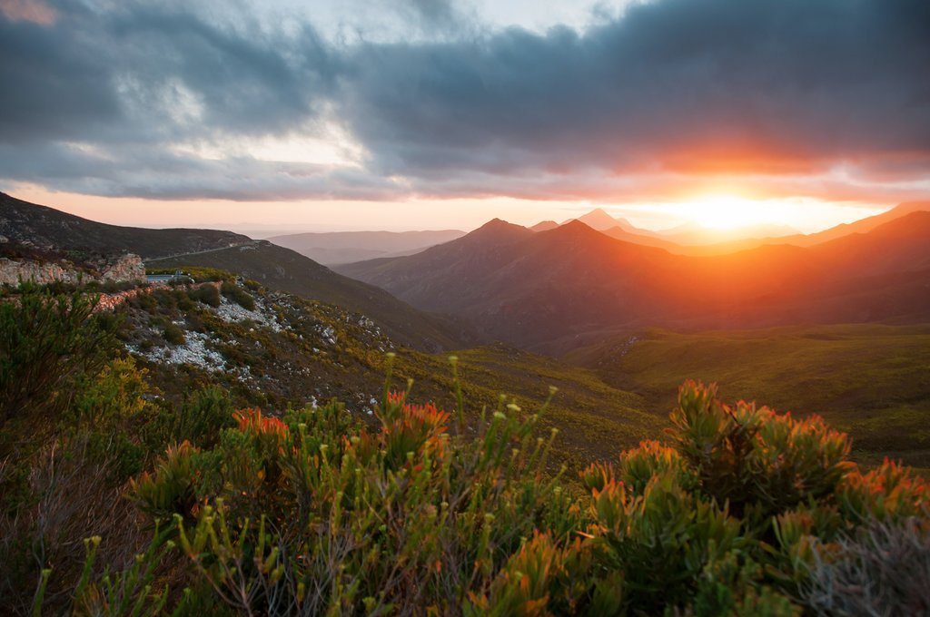 Sunset over the fynbos