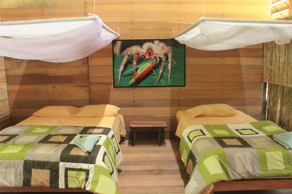 Collpas Tambopata Lodge
