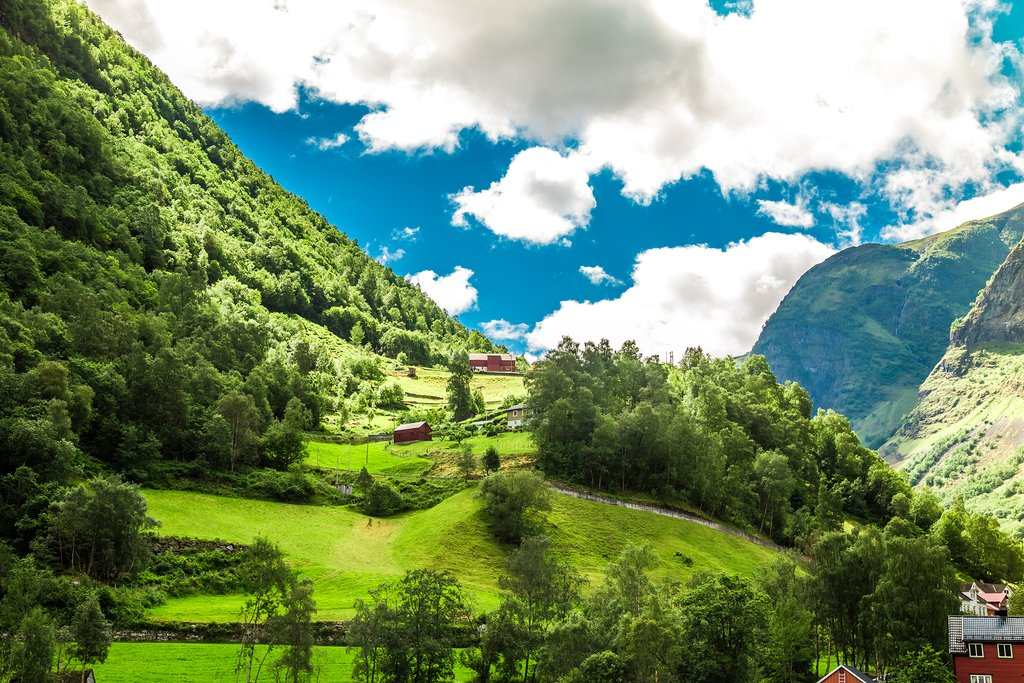 Bike through the lush green Flåm Valley.