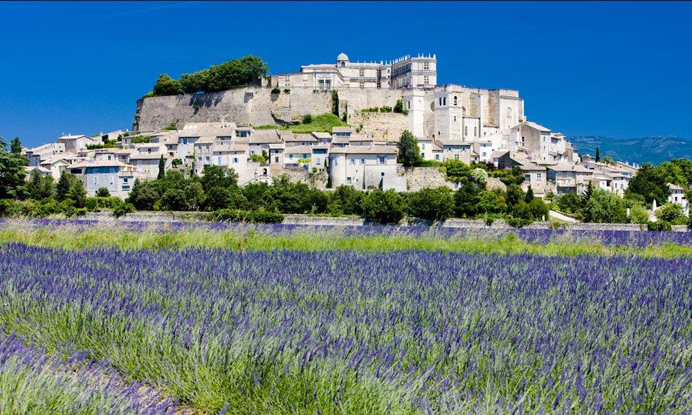 Lavender fields of Drôme Provençale