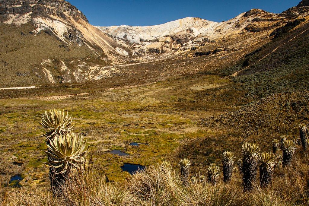 Nevado del Quindio volcano in Los Nevados National Park