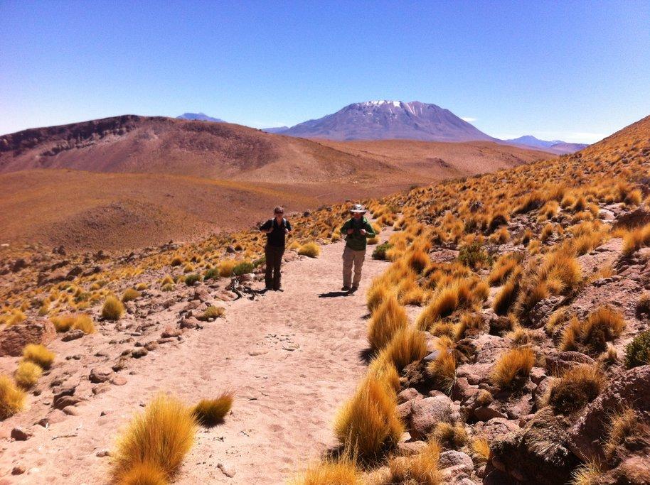 Hiking amid the desert landscape near Copa Coya