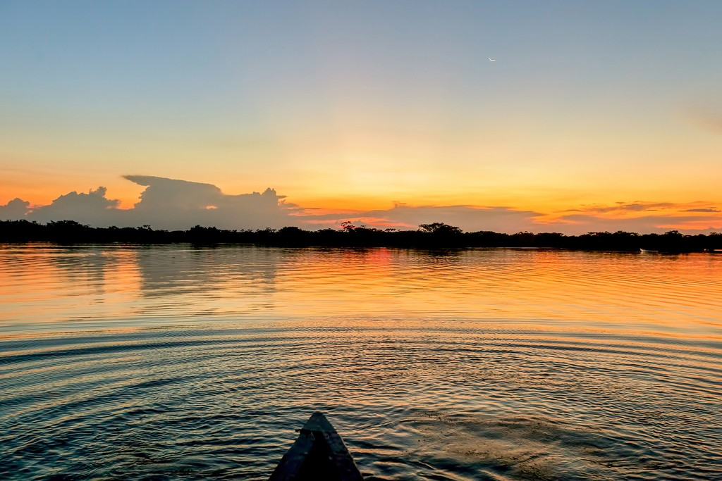 Spend a peaceful evening on the water in a dugout canoe as the rainforest transitions to night