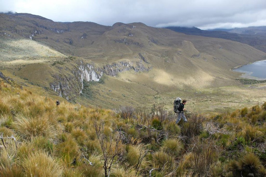 Hiking in Paramo