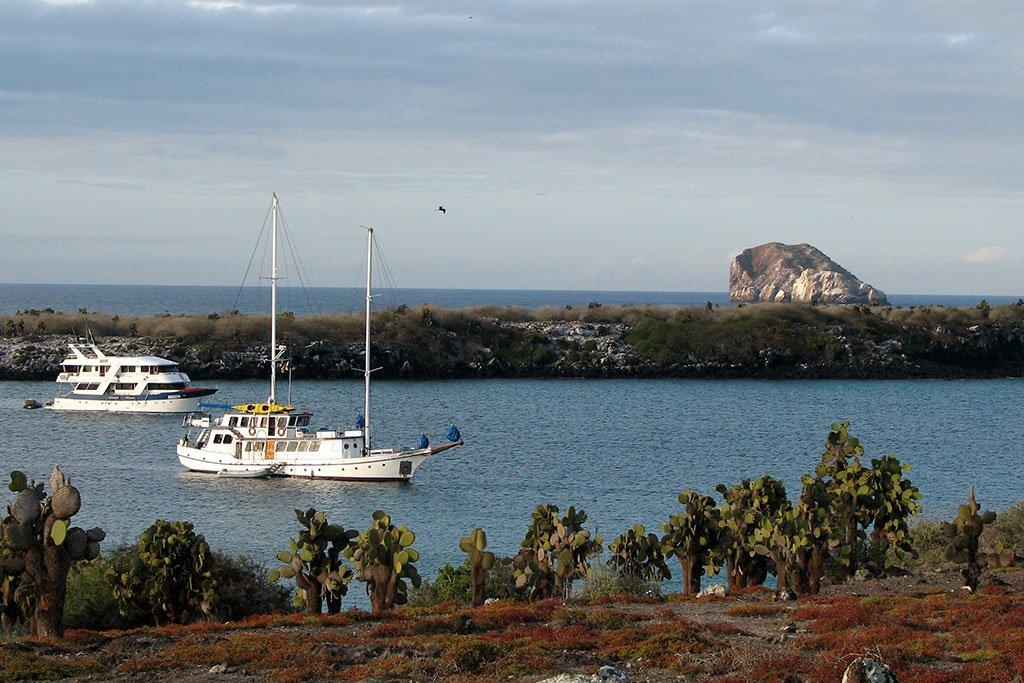 Plaza Sur Island