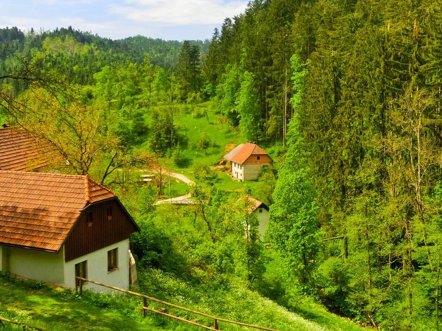 Slovenian farm