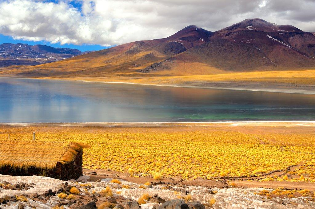 Frozen Lake Miscanti