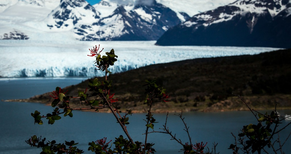 Torres del Paine is breathtaking, but be forewarned: once you visit, you may never want to leave.