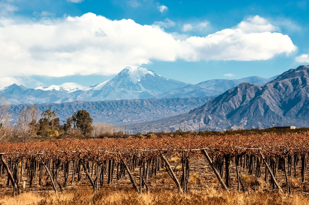 Snow-capped Mount Aconcagua overlooking the Mendoza vineyards