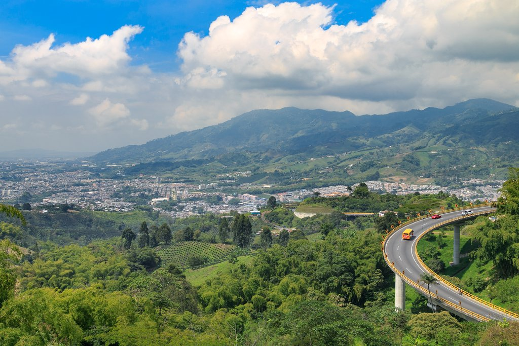 Driving in the coffee region