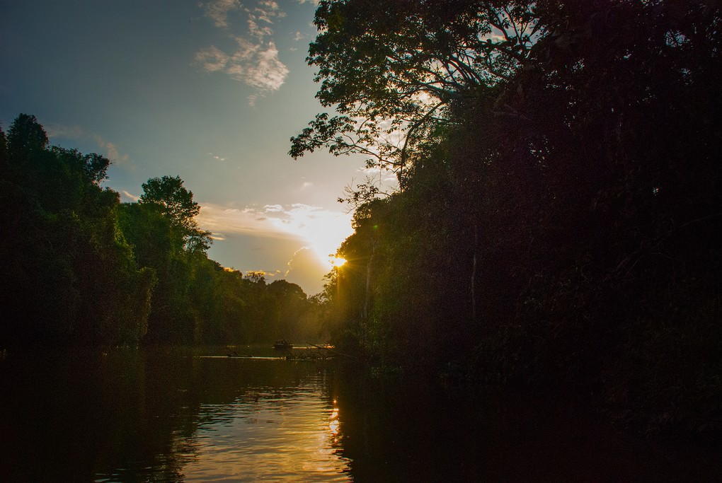 On the river in Borneo at sunset