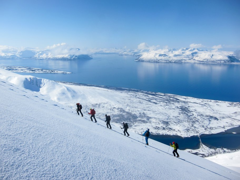 a line of skiers trek up a snowy peak with a fjord in the background