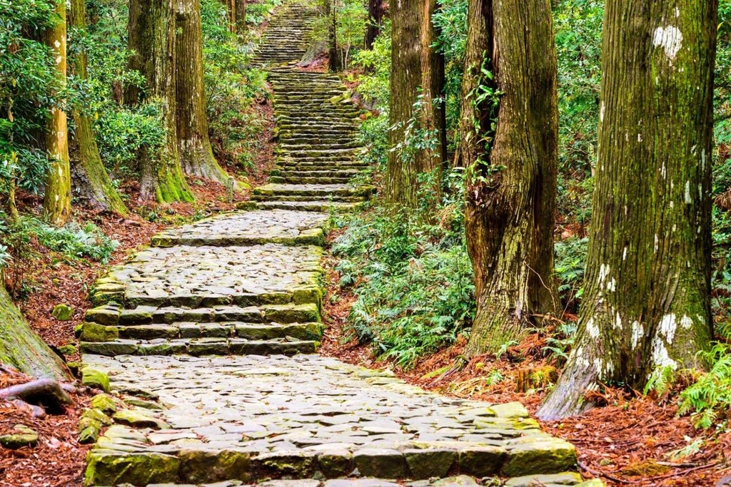 Steps leading up a hilly trail on the Kumano Kodo