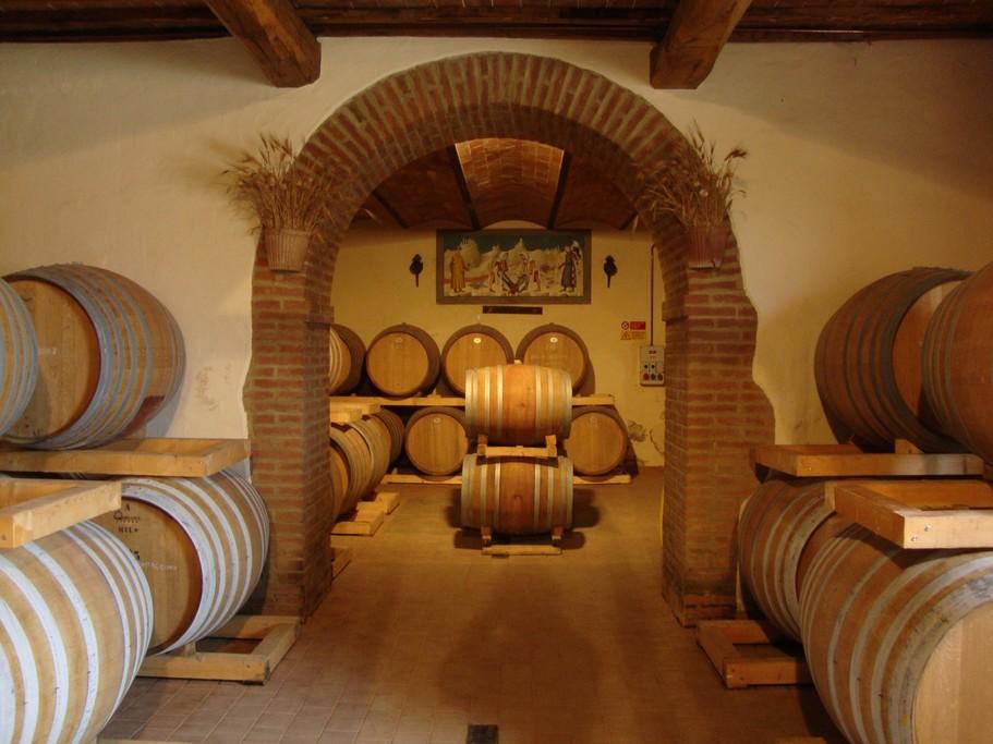 Wine cellar in Buonconvento