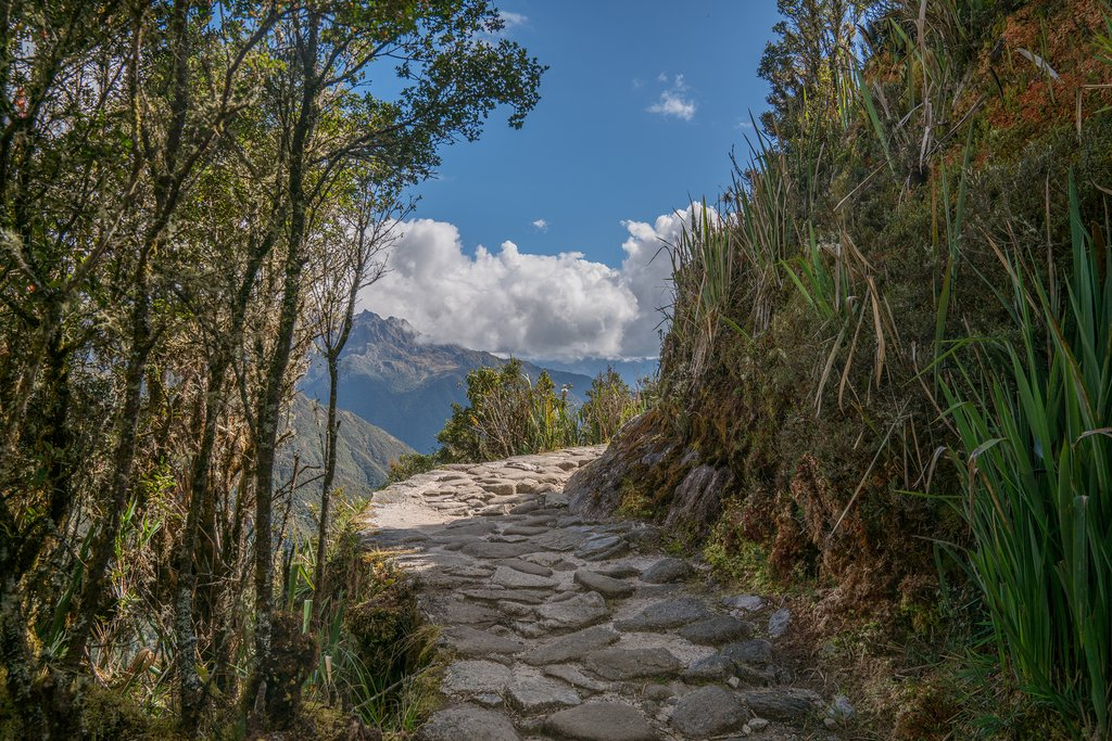 The Inca Trail is paved with stones laid down by the Inca long ago