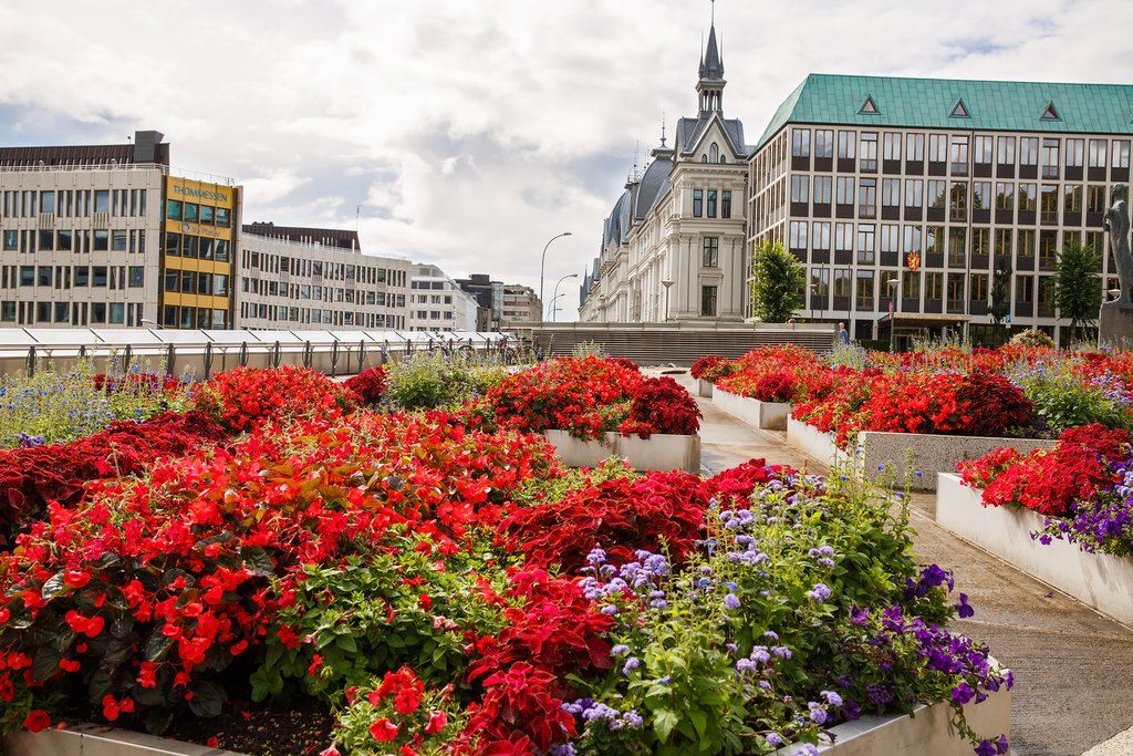 Oslo's in full bloom during summer months.