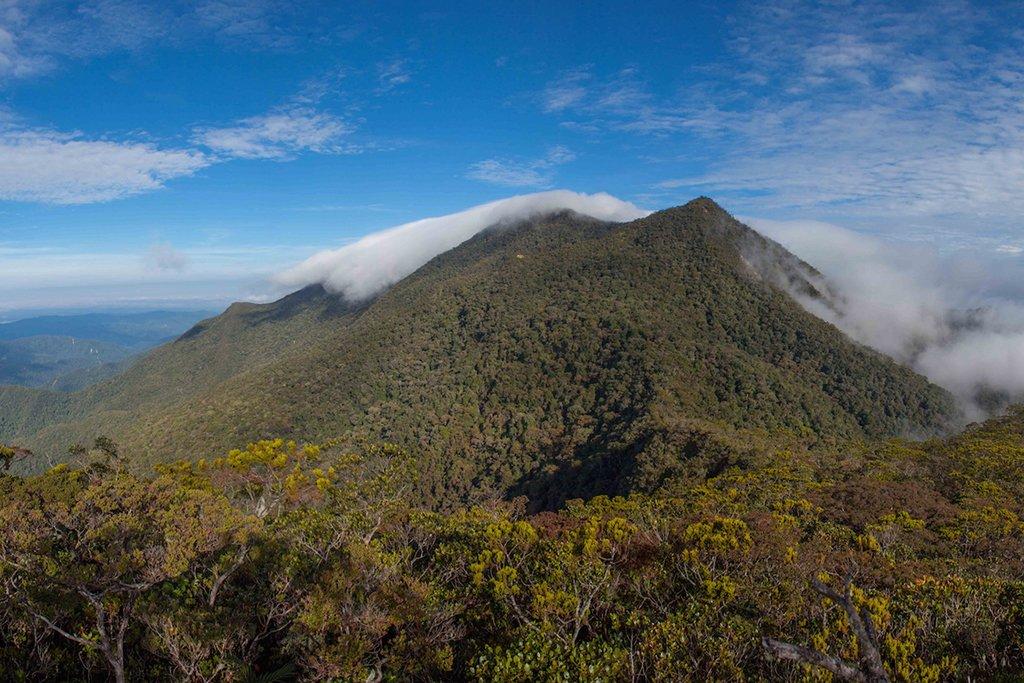 Breathtaking view from summit Mt. Trusmadi