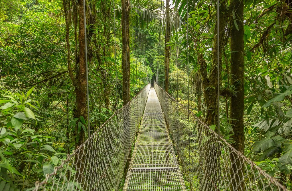 Crossing a hanging bridge in Monteverde Cloud Forest