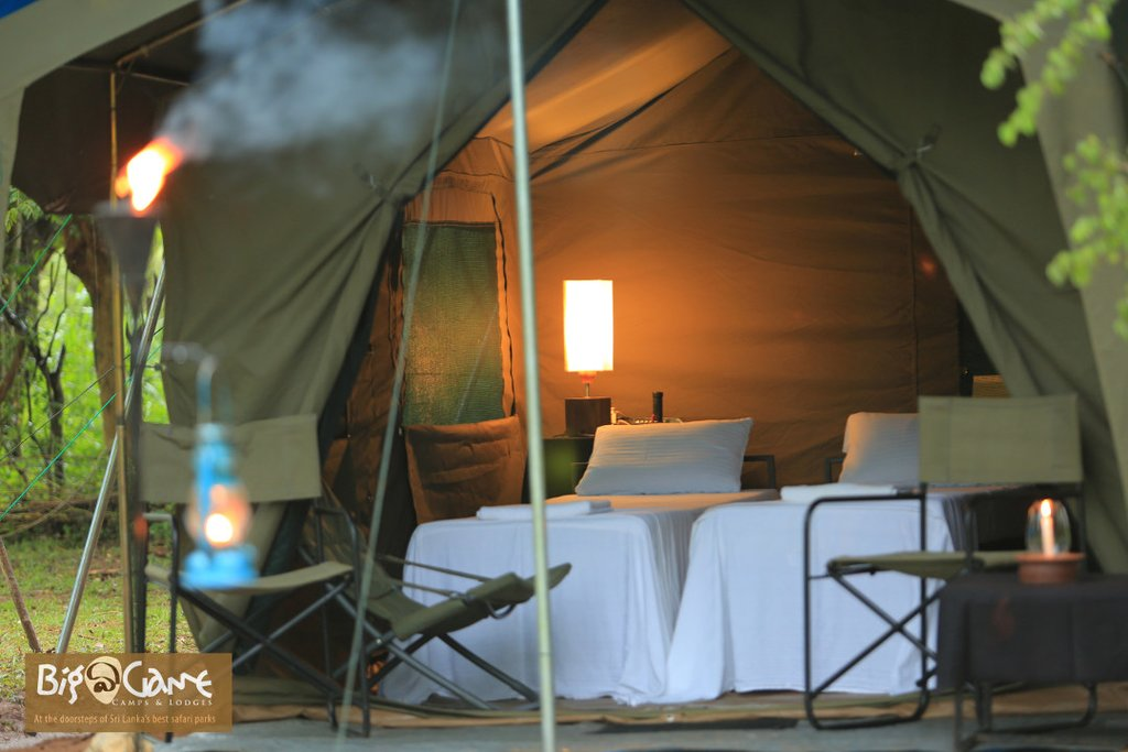 Big Game Safari Campsite accommodations