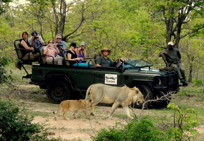 On safari at Shindzela