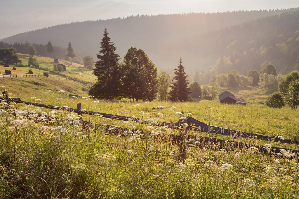 The Bucovina countryside