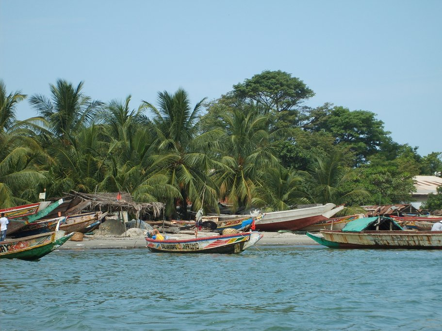 The Gambian coast