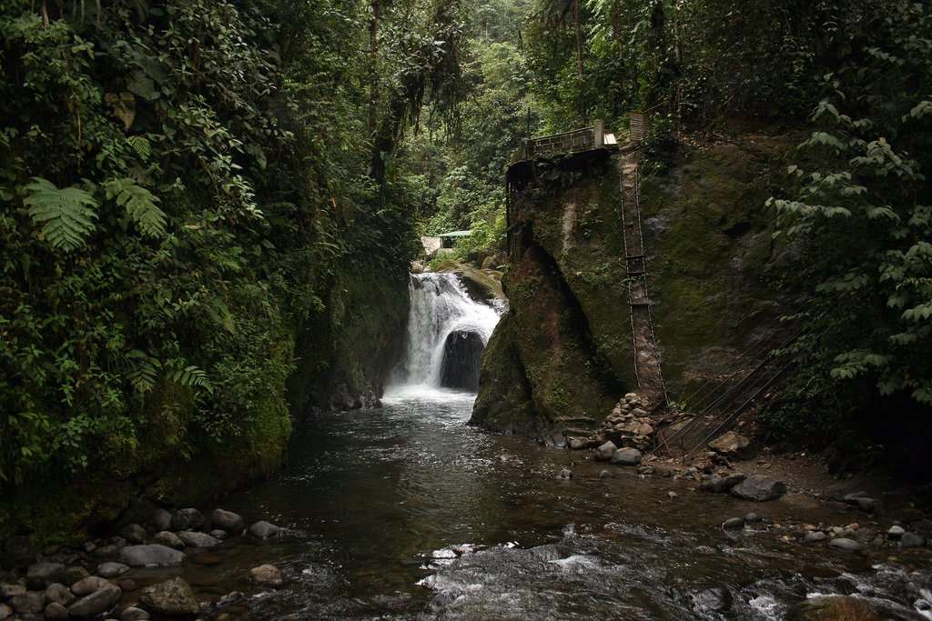 A waterfall rushing into a canyon in the cloud forest in Mindo, Ecuador