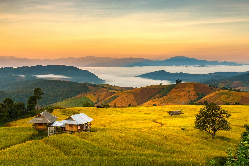 Hills of Chiang Mai province