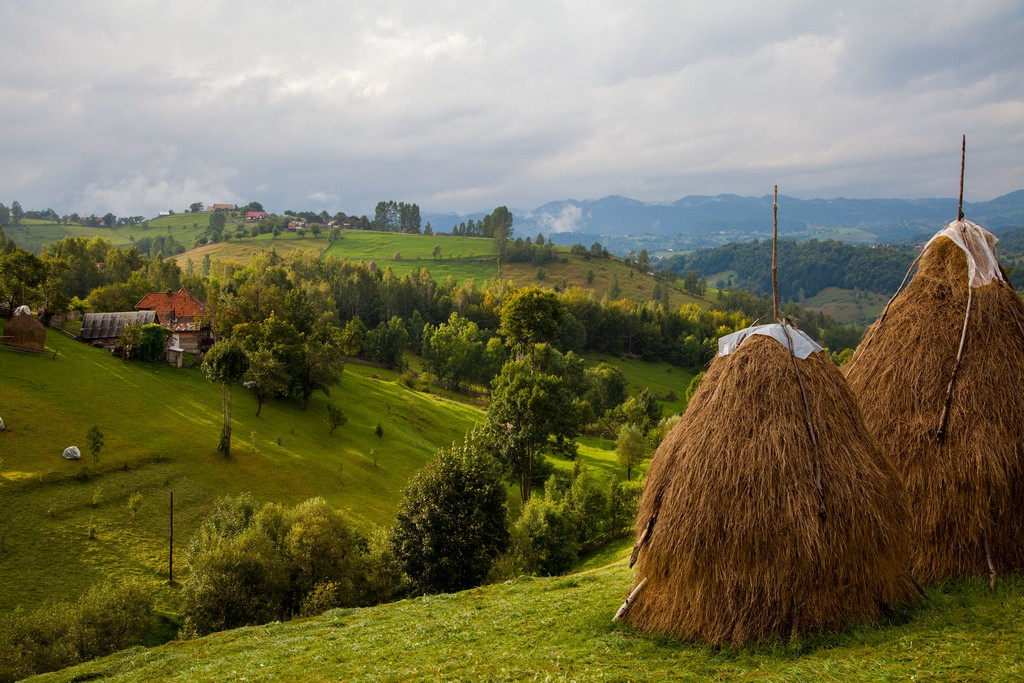 Village farmland in the Piatra Craiului National Park