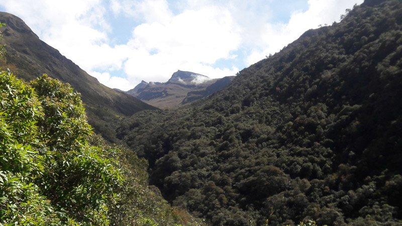 Los Nevados National Park