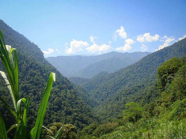 Views on the trail on the way to the Lost City