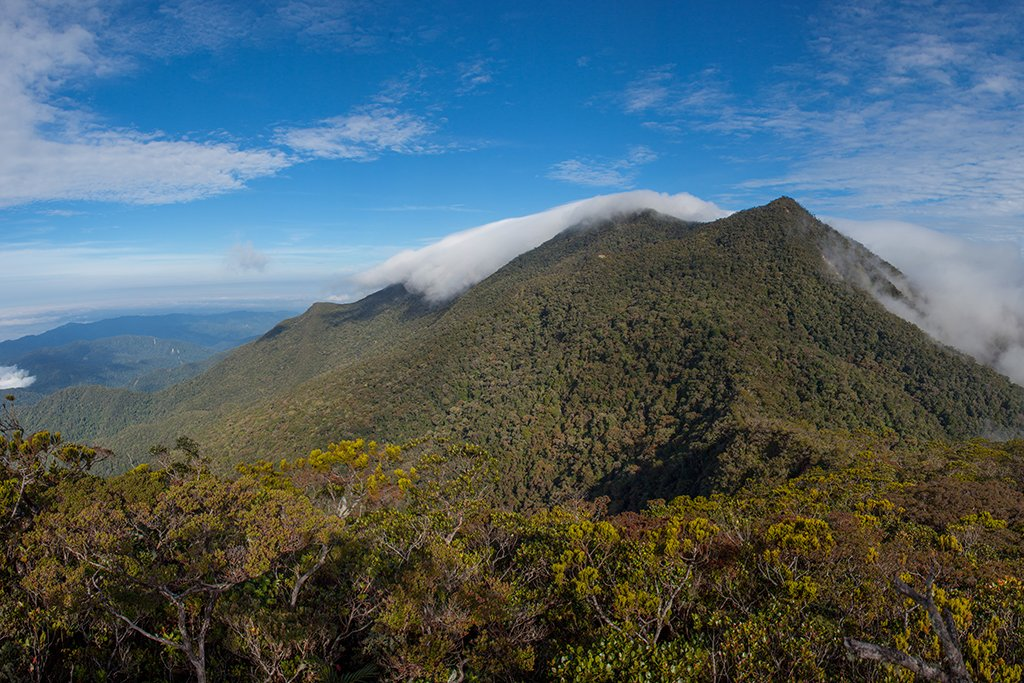 Incredible view from the second highest peak in Sabah, Mount Trus Madi
