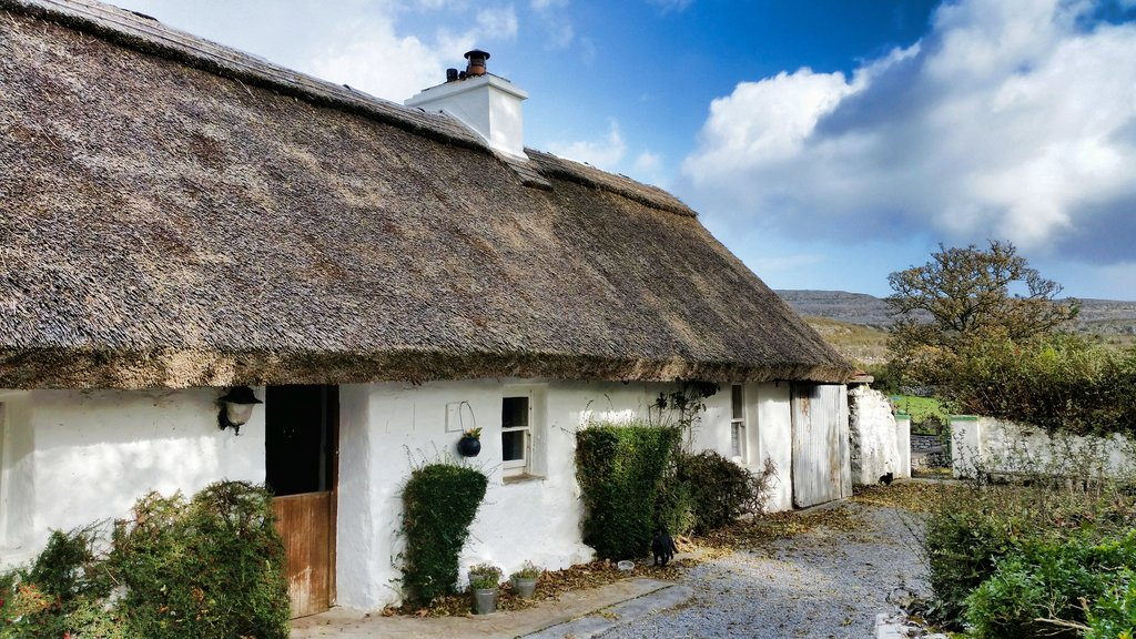 Ireland's traditional houses