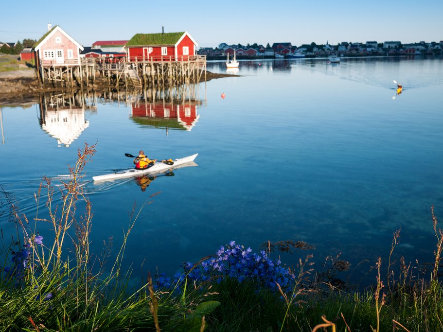 Rent a kayak and look for rare bird species.