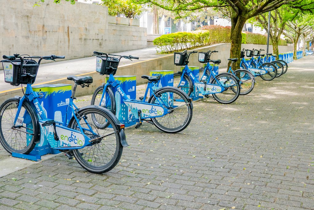 After your tour, explore the city on your own with a city bike.