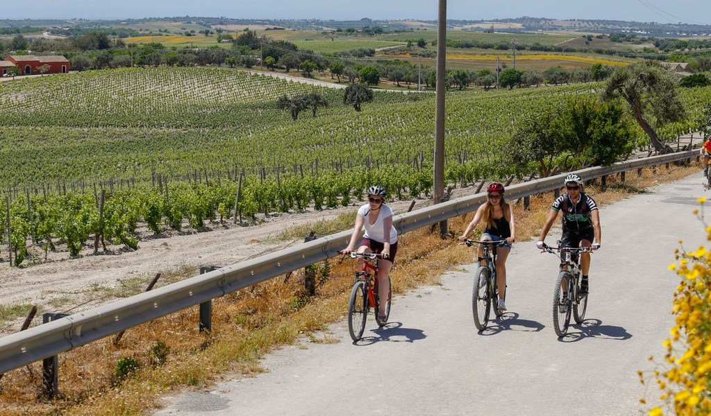 Cyclists pedal through Sicily's beautiful wine country.