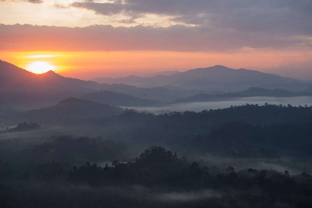 Early morning sunrise in Danum Valley