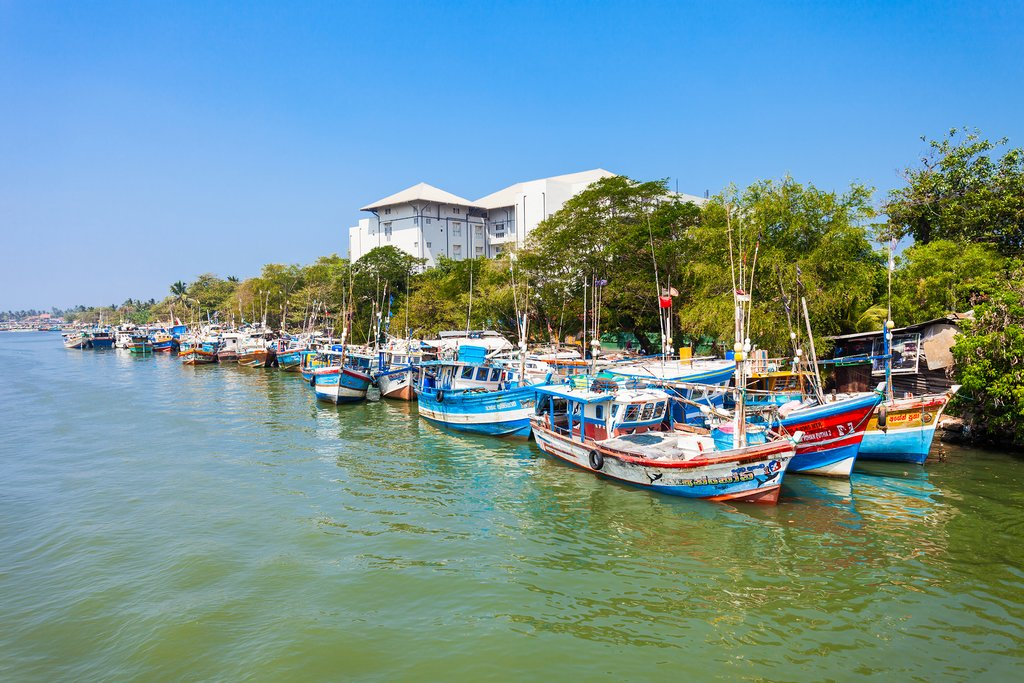 Colorful boats of Negombo