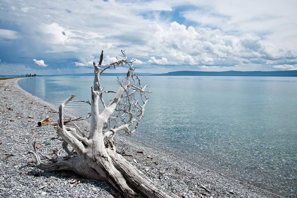 The shores of Lake Khovsgol